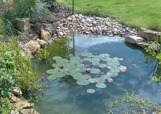Tips for Building Ponds in Your Backyard - My Backyard ideas Garden Pond Design, Bog Garden, Dream Garden, Ponds For Small Gardens, Small Ponds, Water Gardens, Backyard Water Feature, Ponds Backyard, Garden Ponds