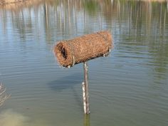 The Bear Trace at Harrison Bay Golf Course Maintenance: Building Mallard Duck Nesting Tubes Wood Duck House, Duck House Plans, Waterfowl Hunting, Duck Hunting, Hunting Stuff, Canard Colvert, Duck Pens, Eagle Cam, Hunting Crafts