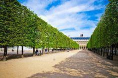 Paris Travel, France Travel, Stone Patio Designs, Royal Garden, Palais Royal, I Love Paris, Formal Gardens, Science And Nature, City Lights