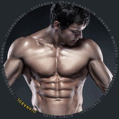 Anabolic Steroids and Supplements