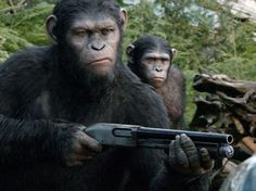 """Just how good is """"Dawn of the Planet of the Apes?"""" It's the second best film of the Apes franchise and has some of the best visual effects we've seen in years. Dawn Of The Planet, Planet Of The Apes, Gary Oldman, Baltimore Riots, Revolution, Don Corleone, Cincinnati Zoo, Motion Capture, Animais"""