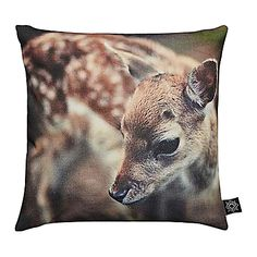 Baby pillow case deer By Nord at MIKKILI online design Deer Pillow, Baby Pillows, Throw Pillows, Baby Duvet, Accent Pillows, Bambi, Baby Sea Otters, Animal Cushions, Oh Deer