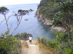 Whale Bay, Northland