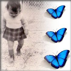 baby and butterfly