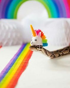 LISTEN, FAM, SNAKES ARE SO CUTE AND I DONT CARE IF ANYONE TELLS ME OTHERWISE
