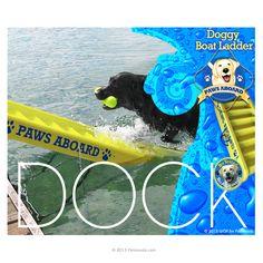 Wahoo Docks Floating Aluminum Dock With Dog Ladder