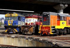 RailPictures.Net Photo: 342 El Zorro T class at Melbourne, Australia by Ian Green