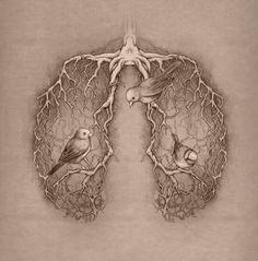 ideas tattoo heart anatomical anatomy art illustrations for 2019 Arte Com Grey's Anatomy, Anatomy Art, I Tattoo, Cool Tattoos, Roots Tattoo, Tattoo Tree, Tatoos, Tatoo Bird, Black White Tattoos
