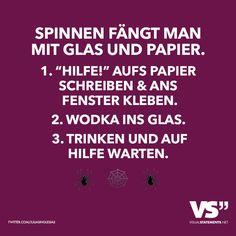 """Spinnen fängt man mit Glas und Papier. 1. """"Hilfe"""" Aufs Papier schreiben & ans Fenster kleben. 2. Wodka ins Glas. 3. Trinken und auf Hilfe warten. - VISUAL STATEMENTS®"""