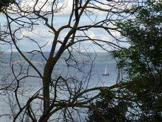 Lungo il Lago di Bolsena