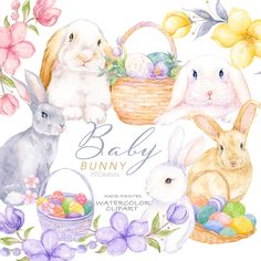 Watercolor Books, Watercolor Background, Baby Bunnies, Bunny, Dolphin Clipart, Spring Animals, Underwater Creatures, Craft Business, Easter Baskets