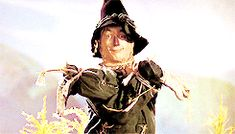 THE WIZARD OF OZ ~ The Scarecrow (Ray Bolger). [Video/GIF]