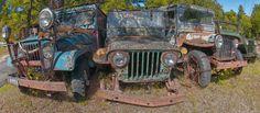 Jeeps Rule Debra Keller