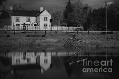 Dragonfly On The Pond © Nigel Jones