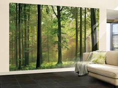 Bosque de otoño - Mural de papel pintado Mural de papel pintado en AllPosters.es