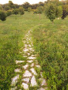 All'arboreto di Manoppello va in scena Chilometro Zero - L'Abruzzo è servito   Quotidiano di ricette e notizie d'AbruzzoL'Abruzzo è servito   Quotidiano di ricette e notizie d'Abruzzo