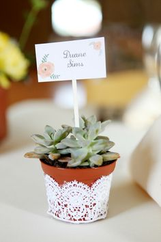 Potted succulent escort card with lace.
