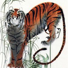 """illustration by Mirko Hanák from the German children's books """"Bilderzoo"""" by Alfred Könner Art Tigre, Tiger Art, Tiger Drawing, Street Art, Historical Art, Animal Sketches, China Painting, Gaucho, Watercolor And Ink"""