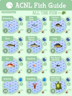 MASSIVE ACNL fish guide--detailed