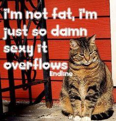 I`m not fat…