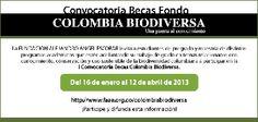 Convocatoria: Becas Fondo Colombia Biodiversa
