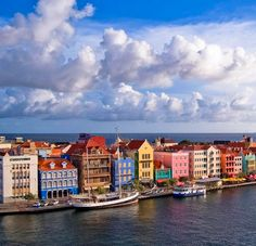 Williamstad   Curaçao - We had a wonderful trip here...staying at a most unlikely place. Lots of goats on this island.
