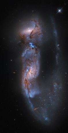 "like-wildfire: ""Arp 81: 100 Million Years Later (Image Credit: Hubble Legacy Archive, ESA, NASA, Martin Pugh) ""From planet Earth, we see this strongly distorted pair of galaxies, cataloged as Arp 81,..."