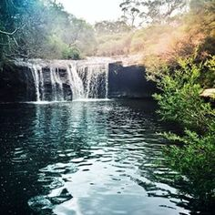 Nellies Glen, Budderoo National Park | 18 Magical Places You Won't Believe Are Actually In Sydney