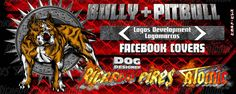 Bully Logo Creations