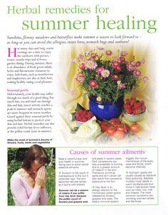 Herbal remedies for Summer healing