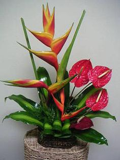 Tropical Flower Arrangement | Bondiz FlowerShop