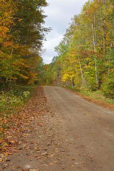Espiritizar e Amar.: E se a vida fosse uma estrada?