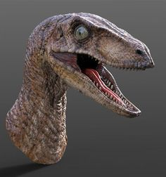 VELOCIRAPTOR BUST FROM JURASSIC PARK, JULIEN ROMEO on ArtStation at https://www.artstation.com/artwork/velociraptor-bust-from-jurassic-park
