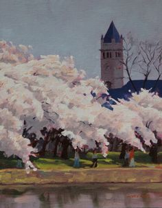 Cherry Trees / Rodgers Naylor / 2013 / oil on board / 11 x 14