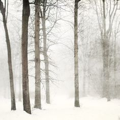 Snow photography Minimal winter landscape by EyePoetryPhotography