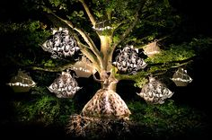 """The Faraway Tree"" Wonderland- Complete Collection - Kirsty Mitchell Photography"