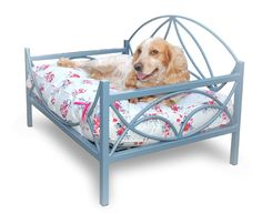 Contemporary metal bed available at www.puddypooch.co.uk in a variety of colours and mattress designs