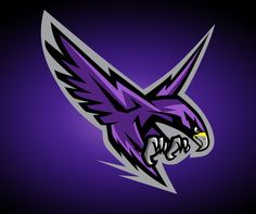 Mascot and logo designs for the Montgomery College Raptors. The brand is featured throughout all the MC athletics division.