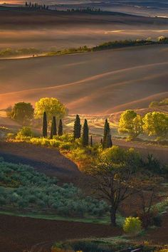 I LOVE NATURE GIVES ME A HAVEN ... 11046783_1666342393617535_757399753397933564_n.jpg (428×642)
