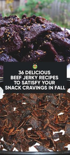 36 Delicious Beef Jerky Recipes to Satisfy Your Snack Cravings in Fall