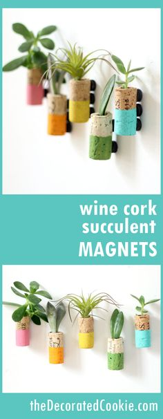 wine cork succulent planter magnets