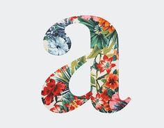 Graphic Design Print, Graphic Design Typography, Lettering Design, Graphic Design Inspiration, Times New Roman, Book Cover Design, Book Design, Creative Photoshop, Typographic Poster