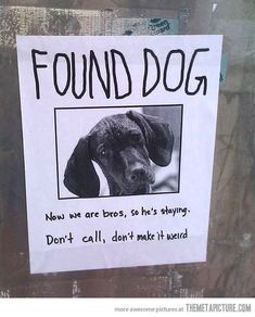 Best found dog poster ever