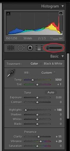 activate lightroom adjustment brush How to Use The Local Adjustment Brush In Lightroom: Part 1