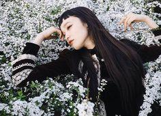 """マンナミユカ on Instagram: """"ユキヤナギ~!見頃ですね。 小学生から好きな花。 白はやっぱり憧れの色。 夏に向けて美白ケアのんびり頑張ってます(○´ー`○) イメージモデルをさせていただいている おすすめ美白ケア、 『ピュアホワイト』の公式サイトにて 只今インスタグラマーさん大募集中です♡ Living with Flowers❁❀✿✾ #vintagestyle #花と古着に囲まれて #幸せ #ピュアホワイト #詳しくは公式サイトにて #マンナミトグラフ #ユキヤナギ"""""""