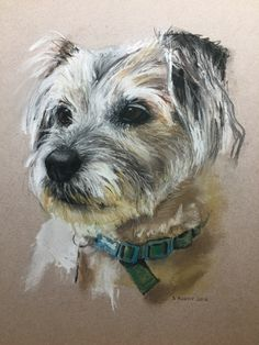 Pastels- Nov 2019 Border Terrier, Ferns, Pastels, Dogs, Animals, Art, Art Background, Animales, Animaux