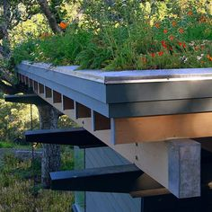 Design Ideas For Flat Roofed Buildings-no worries about deer or bunnies up here! #GreenRoofs