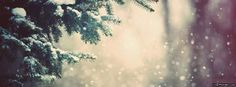 Winter Snow Facebook Cover
