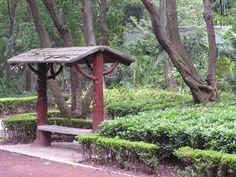 LA COLONIA CONDESA Parque Mexico