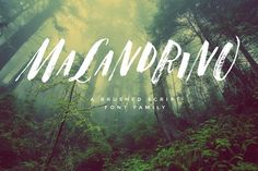 Malandrino Font Set by tuccicursive on @creativemarket Brush Lettering Quotes, Hand Lettering Styles, Hand Lettering Alphabet, Brush Font, Lettering Design, Cool Fonts, Pretty Fonts, Creative Fonts, Beautiful Fonts